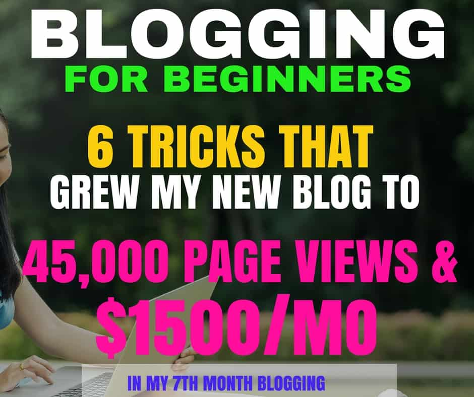 Blogging for beginners 6 tricks that grew my new blog to 45k page income and traffic reports fandeluxe Images